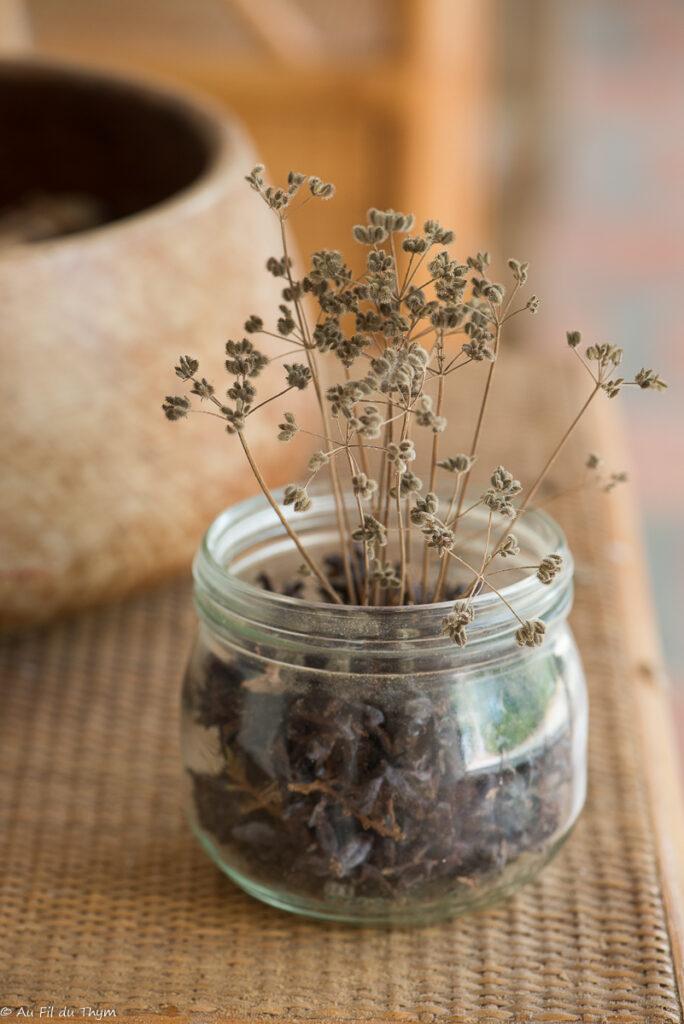Déco été : pots à fleurs sèches