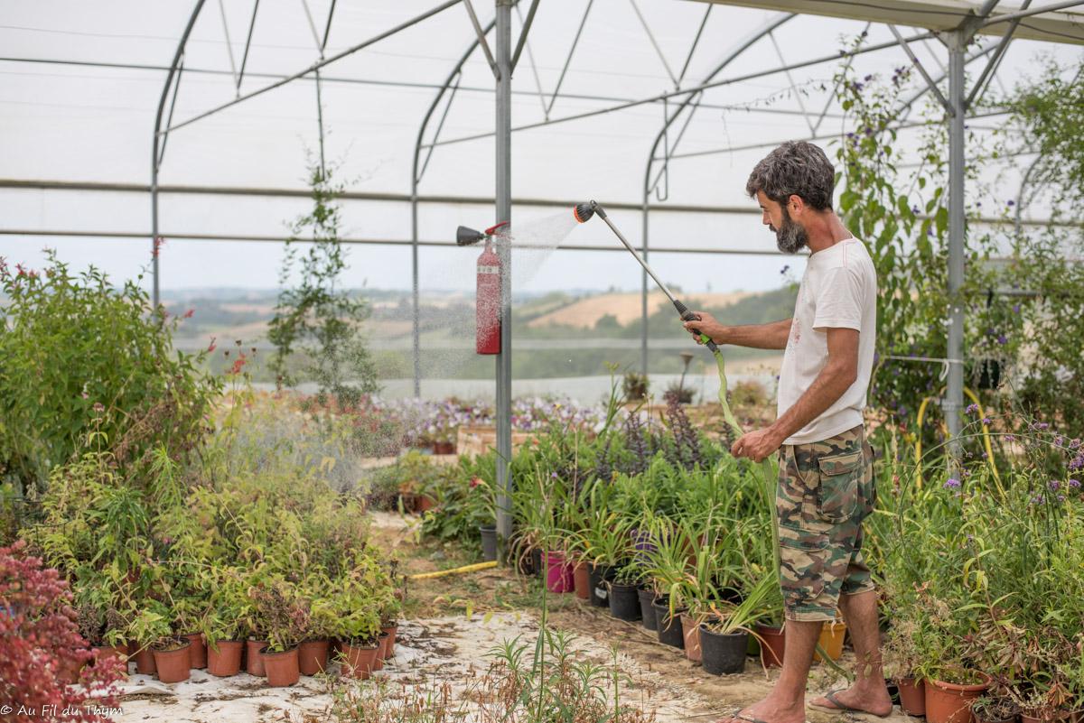 Vis ma vie d'artisan : Sébastien, horticulteur aux Serres du Barraqué (Laymont, Gers)
