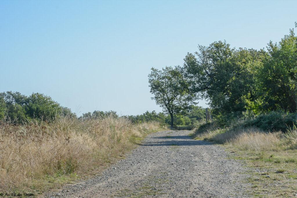 Randonnée bonrepos-sur-aussonnelle : Voie romaine