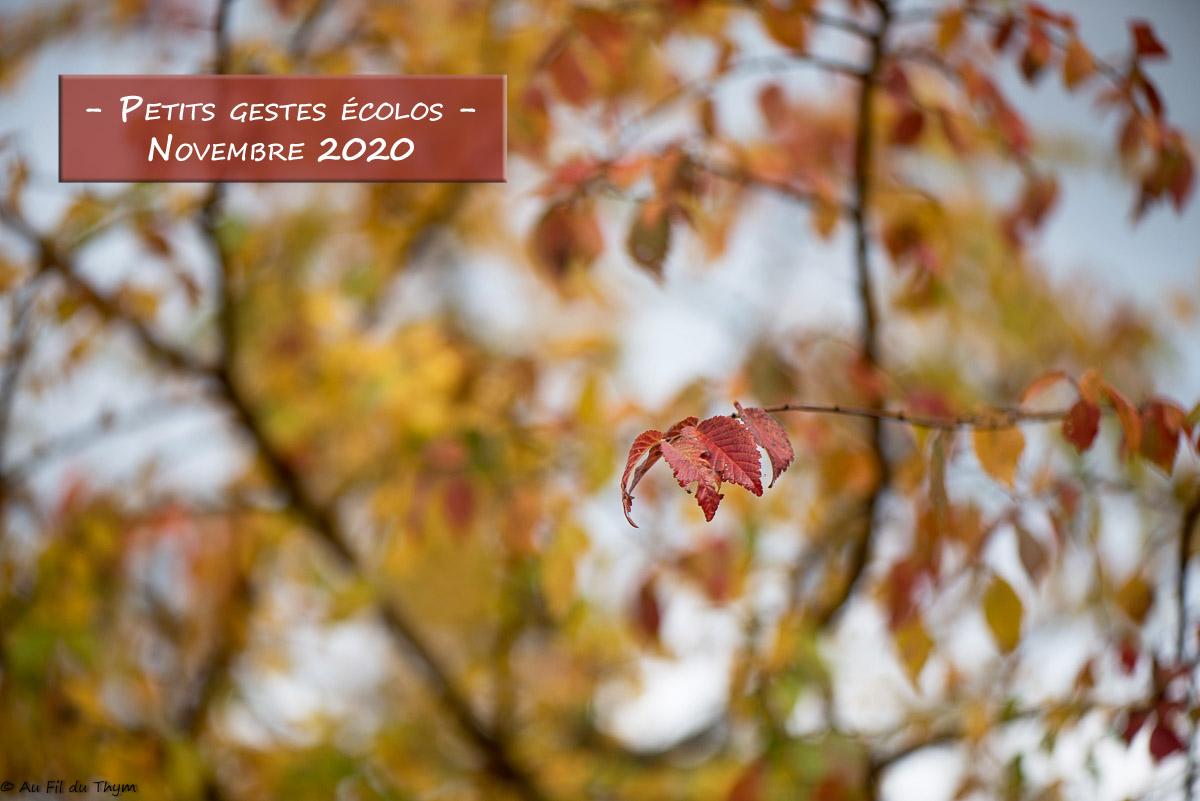 Petits gestes écolos du mois – Novembre 2020