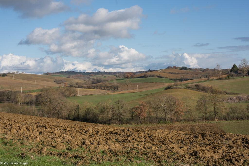 Noël dans le Gers : paysage de campagne