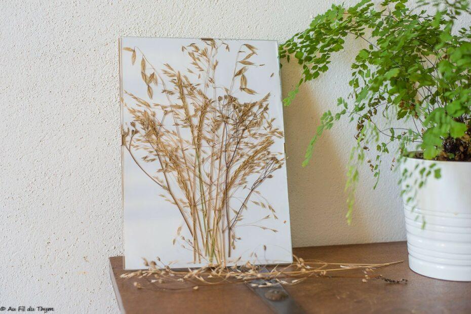 DIY - Cadre Graminée nature et zéro déchet